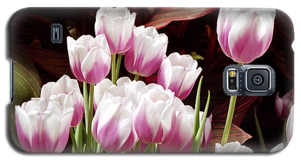 Tulips 2 Galaxy S5 Case