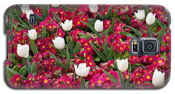 Galaxy S5 Case featuring the photograph Tulips And Primroses by Geraldine Alexander