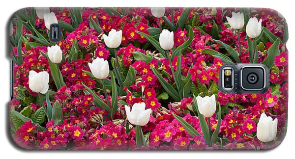 Tulips And Primroses Galaxy S5 Case