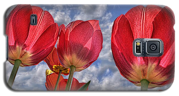 Tulips Are Better Than One Galaxy S5 Case
