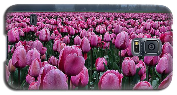 Tulips Galore Galaxy S5 Case by Don Schwartz