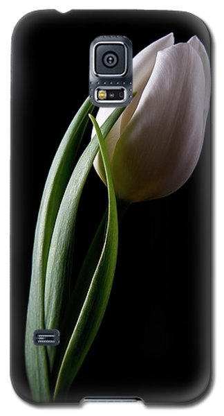 Tulips IIi Galaxy S5 Case by Tom Mc Nemar
