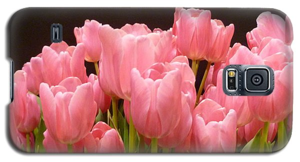 Galaxy S5 Case featuring the photograph Tulips In Bloom by Lingfai Leung