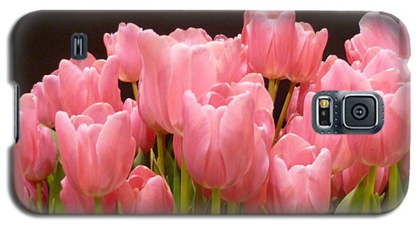 Tulips In Bloom Galaxy S5 Case by Lingfai Leung