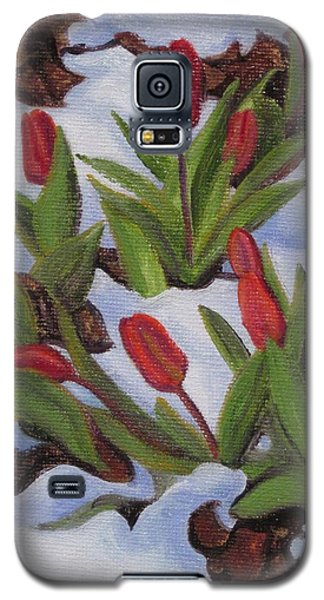 Tulips In Snow Galaxy S5 Case