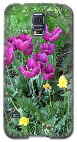 Tulips In Summer Galaxy S5 Case