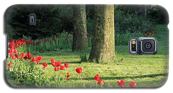 Galaxy S5 Case featuring the photograph Tulips In The Park by Jose Oquendo