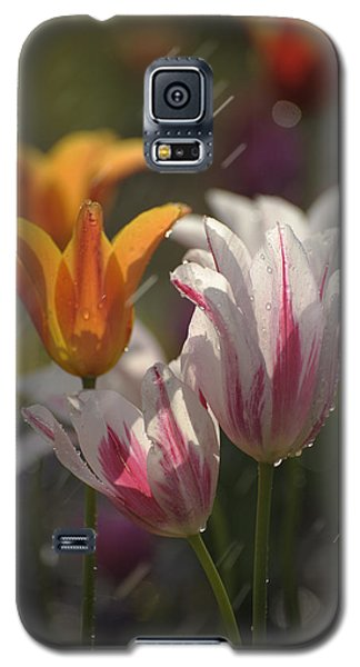 Galaxy S5 Case featuring the photograph Tulips In The Rain by Phyllis Peterson