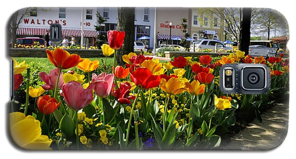 Tulips In The Spring Galaxy S5 Case by Nava Thompson