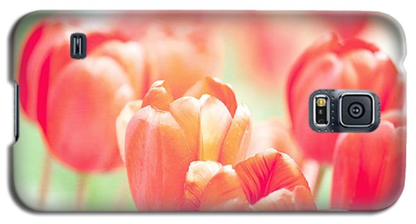 Tulips In The Sun Galaxy S5 Case