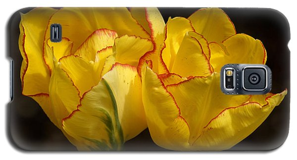 Galaxy S5 Case featuring the photograph Tulips by Inge Riis McDonald