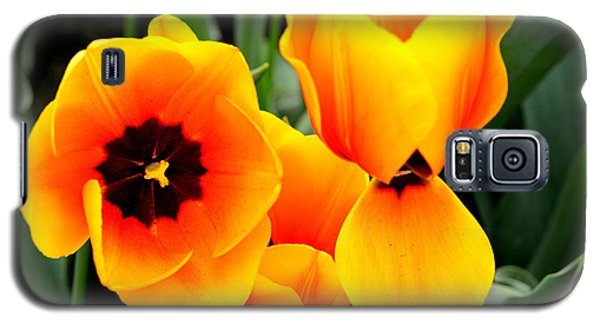 Tulips... Galaxy S5 Case by Jerry Cahill