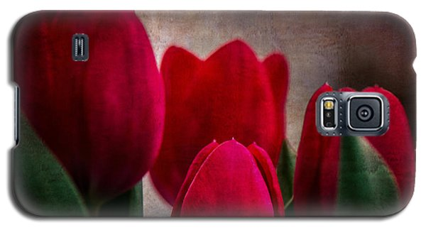 Tulips Galaxy S5 Case by Judy Wolinsky