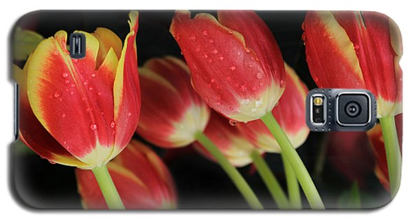 Tulips Galaxy S5 Case by Kristine Merc