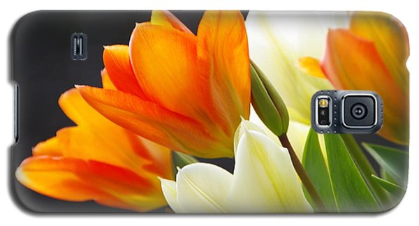 Galaxy S5 Case featuring the photograph Tulips by Marilyn Wilson