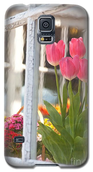 Tulips Of Greenhouse Galaxy S5 Case