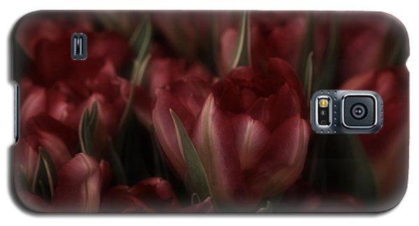 Tulips Romantic Galaxy S5 Case by Richard Cummings