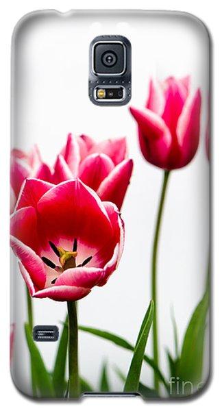 Tulips Say Hello Galaxy S5 Case