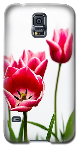 Tulips Say Hello Galaxy S5 Case