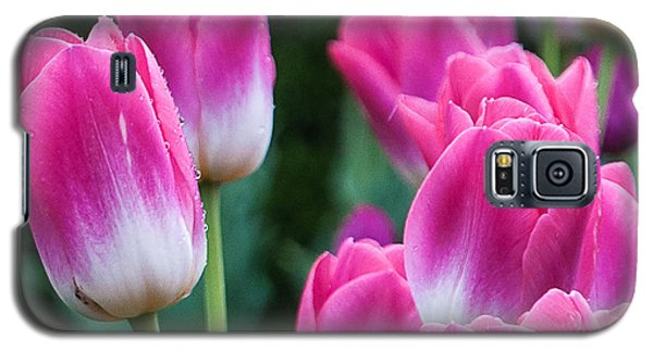 Galaxy S5 Case featuring the photograph Tulips by Sergey Simanovsky