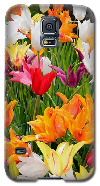 Galaxy S5 Case featuring the photograph Tulips Tulips by Haleh Mahbod