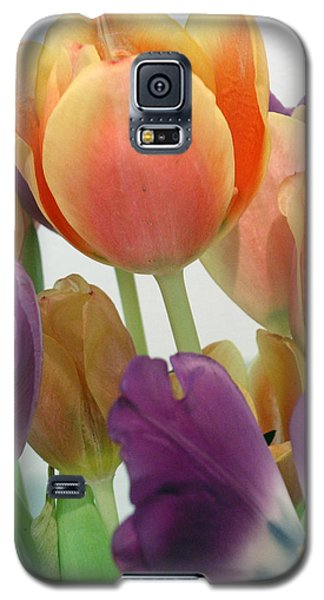 Tulips Up Close Galaxy S5 Case by Karen Nicholson