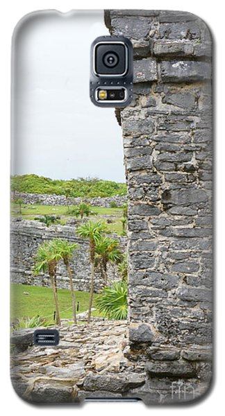Tulum Ruins 4 Galaxy S5 Case