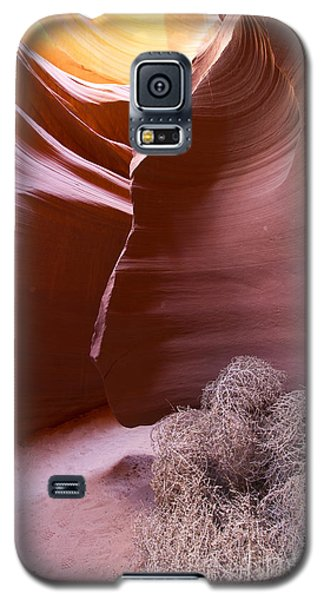 Galaxy S5 Case featuring the photograph Tumbleweed In The Canyon by Bryan Keil