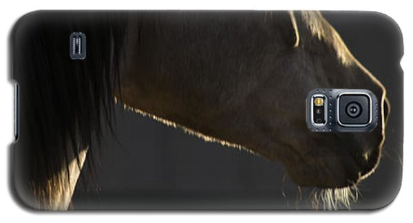 Tupelo Galaxy S5 Case