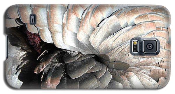Galaxy S5 Case featuring the photograph Turkey Siesta by Diane Alexander