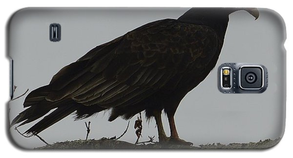 Galaxy S5 Case featuring the photograph Turkey Vulture by Randy Bodkins