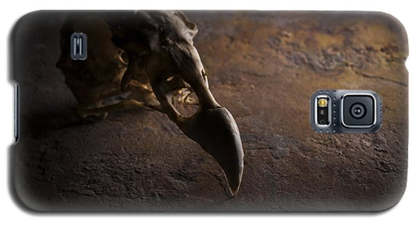 Turkey Vulture Skull On Slate Galaxy S5 Case