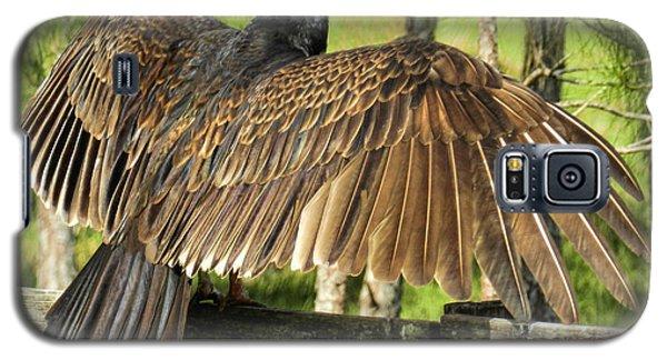 Turkey Vulture Wings Spread Galaxy S5 Case
