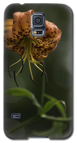Turks Cap 0002 Galaxy S5 Case