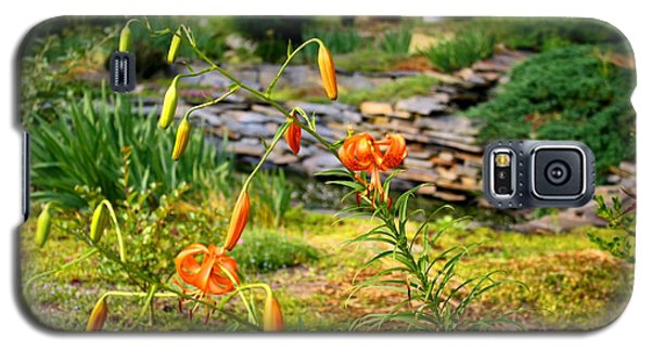 Galaxy S5 Case featuring the photograph Turk's Cap Lily by Kathryn Meyer