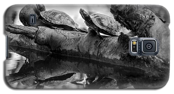 Turtle Bffs Bw By Denise Dube Galaxy S5 Case