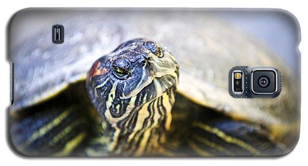 Turtle Galaxy S5 Case by Elena Elisseeva