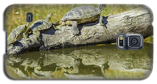 Turtle Reflections Galaxy S5 Case