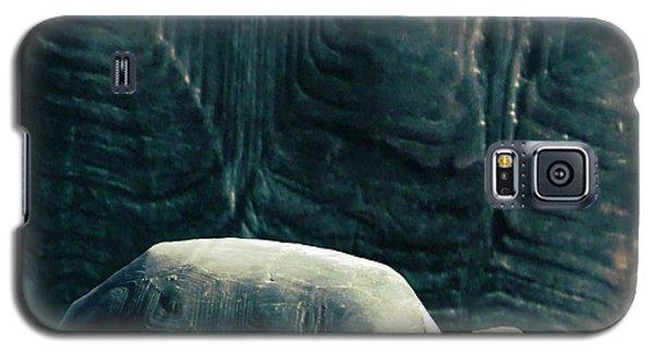 Turtle Shield Galaxy S5 Case