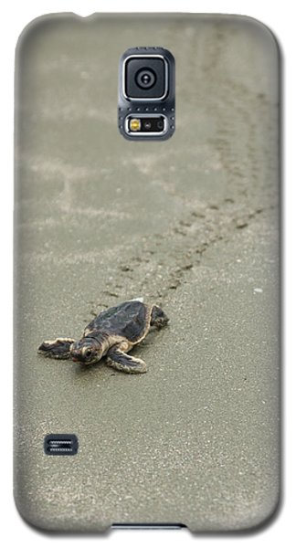 Galaxy S5 Case featuring the photograph Turtle Tracks by Patricia Schaefer