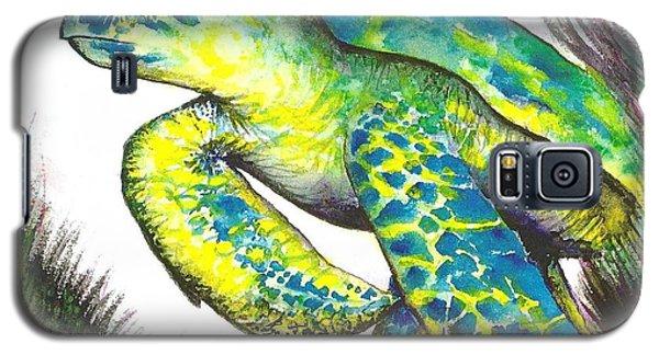 Turtle Wonder Galaxy S5 Case