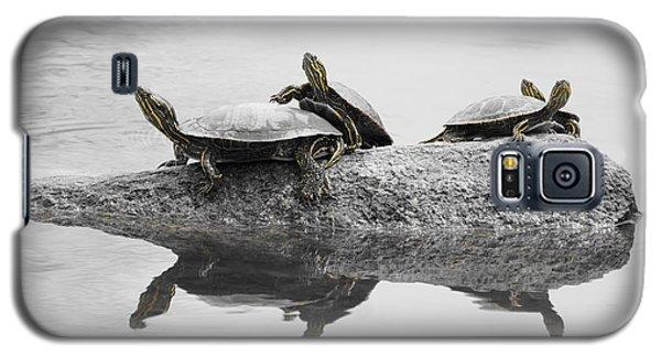 Turtles Galaxy S5 Case