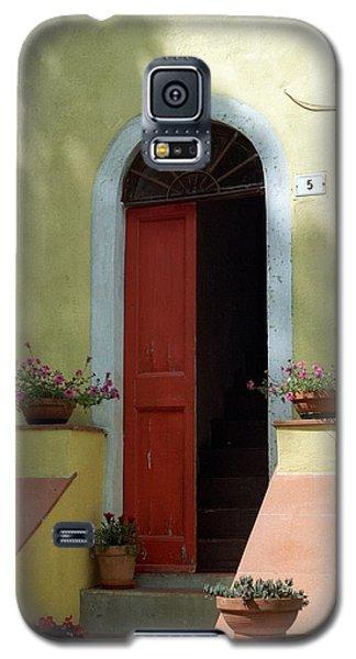 Tuscan Door Galaxy S5 Case