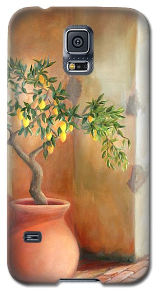 Tuscan Lemon Tree Galaxy S5 Case