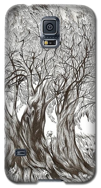 Tuscany Olives Galaxy S5 Case