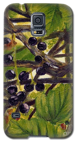 Twigs Leaves And Wild Berries Galaxy S5 Case by Jingfen Hwu
