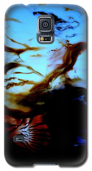 Twilight Dreaming Galaxy S5 Case by Christine Ricker Brandt