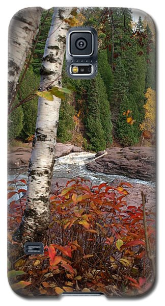 Twin Aspens Galaxy S5 Case by James Peterson