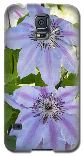 Twin Beauty Galaxy S5 Case