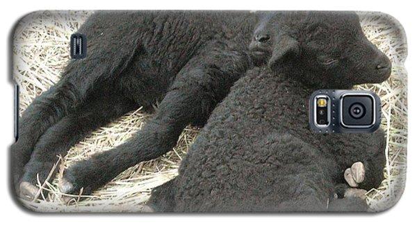 Twin Black Lambs Galaxy S5 Case